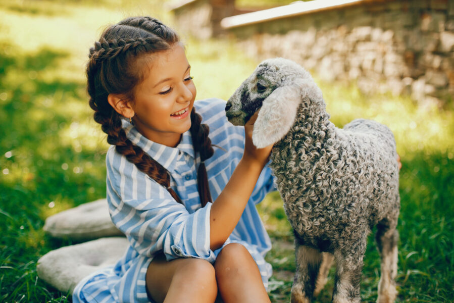 beautiful and cute girl in blue dresses with beautiful hairstyles and make-up sitting in a sunny green garden and playing with a goat