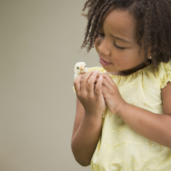 A girl holding a baby chick.